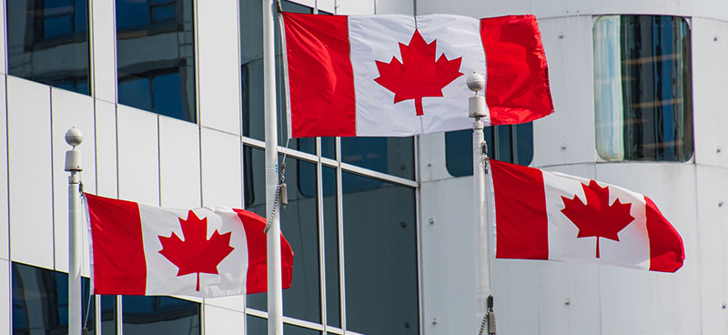 Professional and Skilled Worker Canada Immigration Program